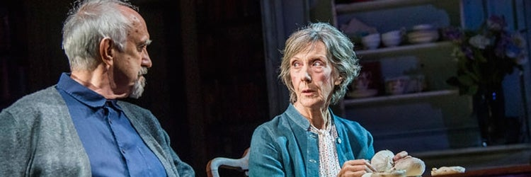 Jonathan Pryce & Eileen Atkins in The Height of the Storm