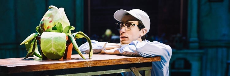 Gideon Glick in Little Shop of Horrors
