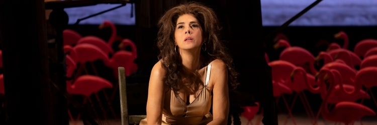 Marisa Tomei in The Rose Tattoo