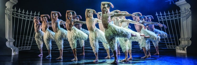The Cast of Matthew Bourne's Swan Lake