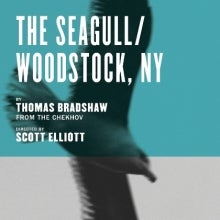 The Seagull/Woodstock, NY